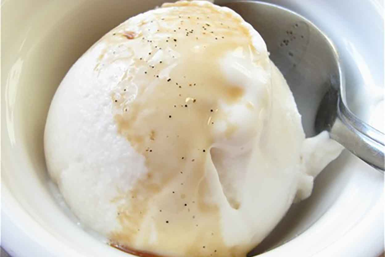 Vanilla Frozen Yogurt Recipe | King Arthur Flour