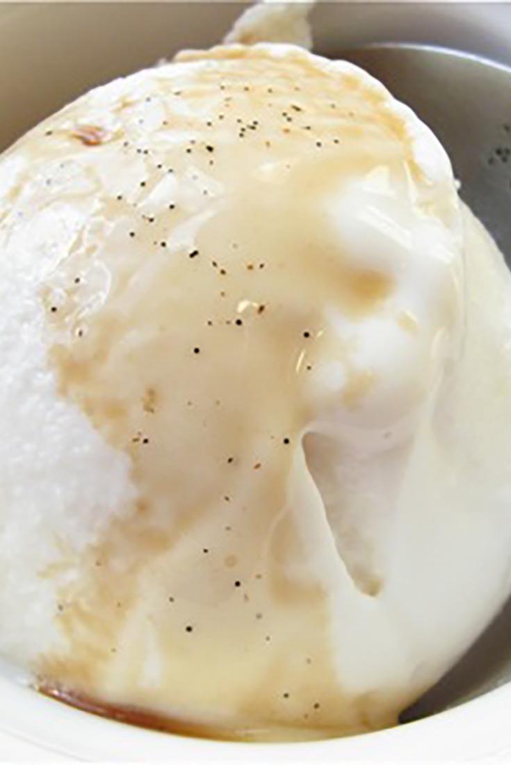 Vanilla Frozen Yogurt Recipe
