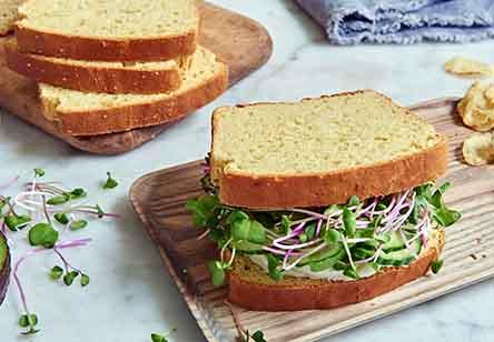 Gluten-Free Double-Milk Sandwich Bread