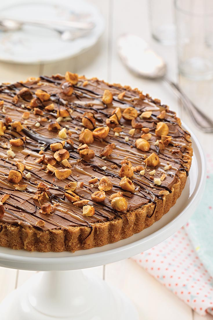 Frozen Chocolate Mousse Tart Recipe