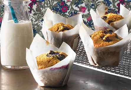 Blueberry Sourdough Muffins