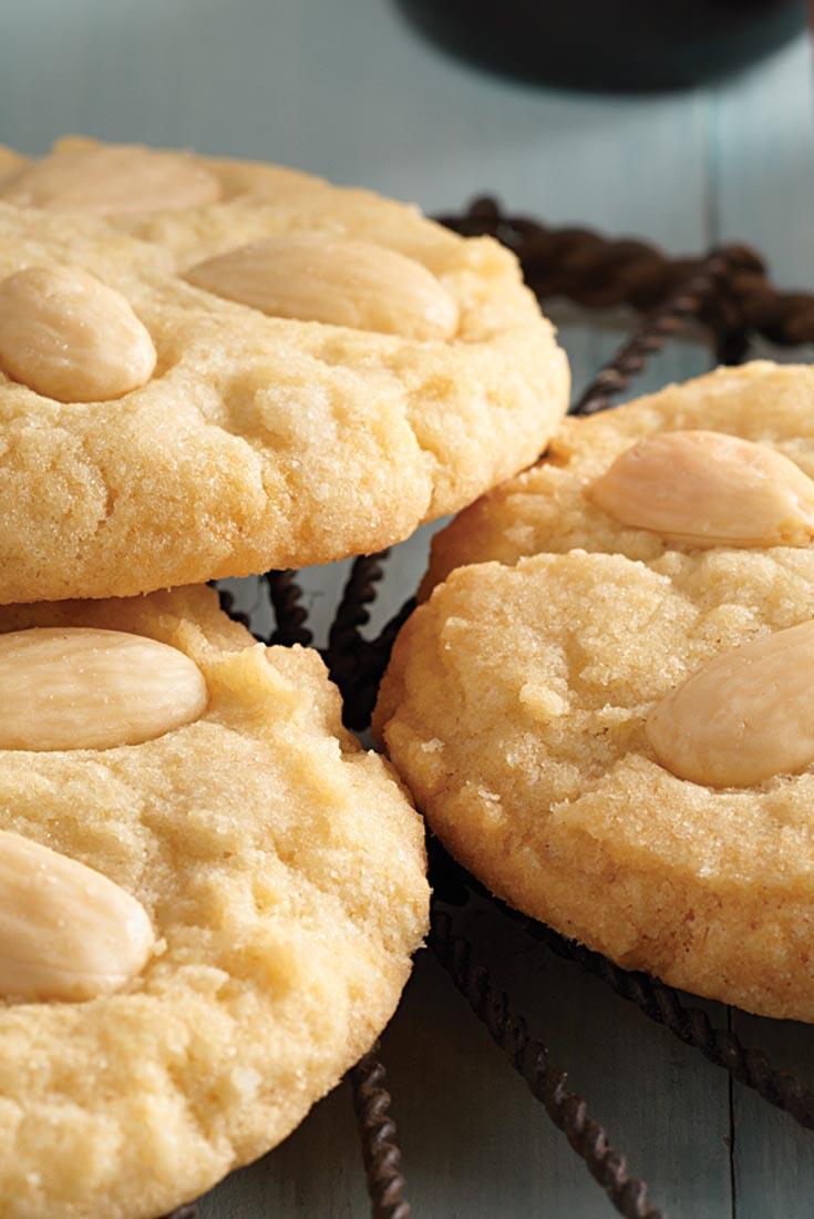 Sand Dollar Sugar Cookies Recipe