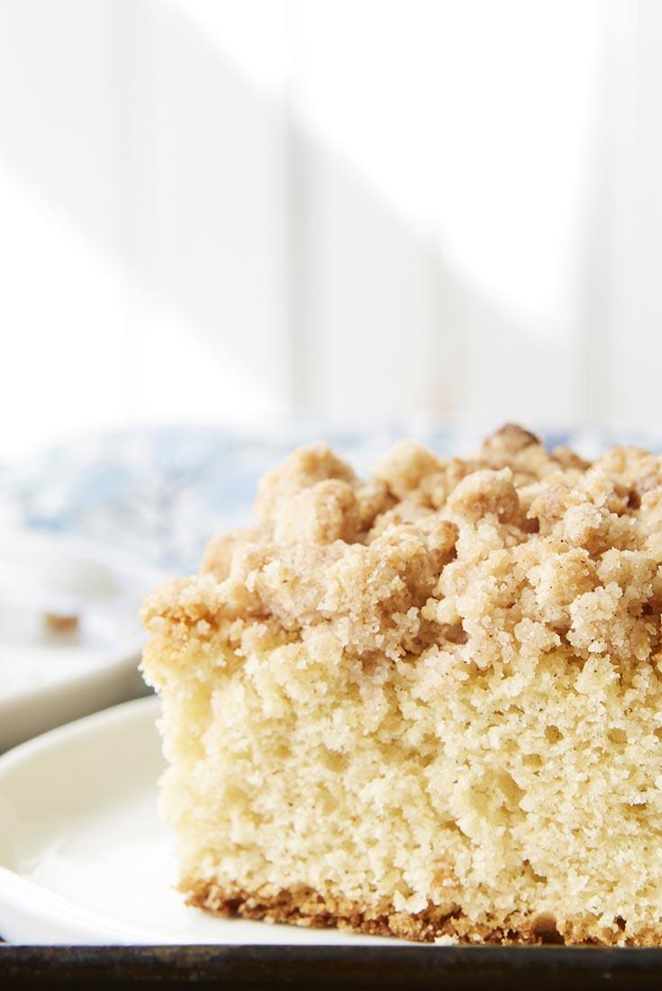 Sourdough Cinnamon Crumb Cake Recipe